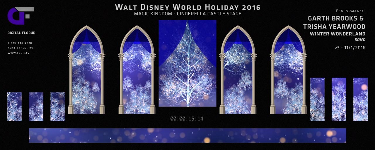 Disney Parks Holiday Specials 2016 - Show Look